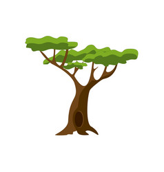 stylized green tree cartoon vector image