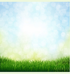 grass with bokeh vector image vector image