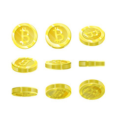 bitcoins gold 3d coin from different angles vector image