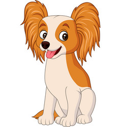 Cartoon papillon dog isolated on white background vector