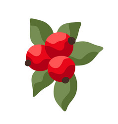 Cartoon ripe cranberries vector