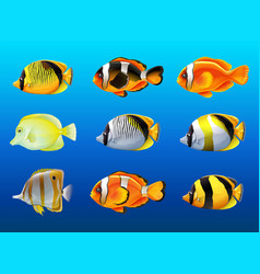 different kinds of fish under the ocean vector image