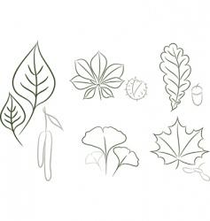 Leaf sketch vector