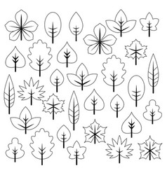 set of bright autumn leaves set of bright autumn vector image