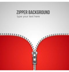 zipper background vector image vector image