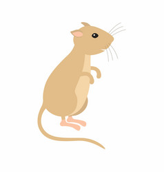 gerbil sitting on his feet vector image