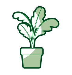 green silhouette of beet plant in flower pot with vector image