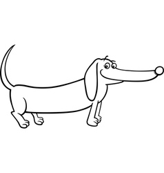 dachshund dog cartoon for coloring vector image
