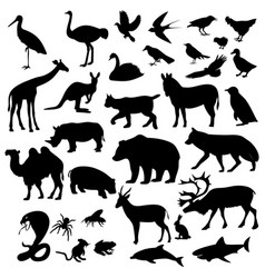 animals are different vector image vector image