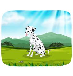 dalmatian on nature scene vector image