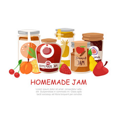 Homemade jam with fresh fruits and berry jam with vector