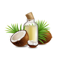 natural and organic coconut oil realistic vector image