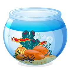 a water bowl and animals vector image