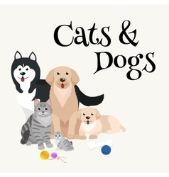 Cat and dog together lying vector image