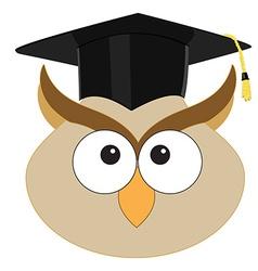 Owl in graduation hat vector image