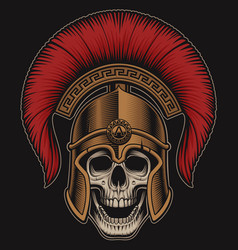 a skull in a spartan helmet vector image