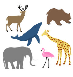 Animals baby vector