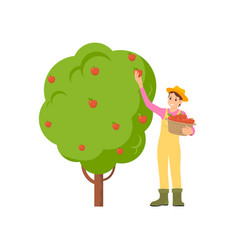 Farmer harvesting season icon vector