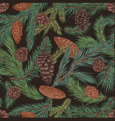 seamless coniferous pattern with fir and spruce vector image