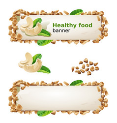 Set banners with cashew and ground nuts vector