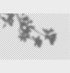 shadow overlay effect transparent overlay shadow vector image