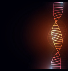 dna abstract background with copy space for text vector image