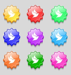 Dove icon sign symbol on nine wavy colourful vector image vector image