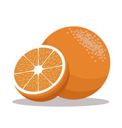 orange nutrition healthy image vector image