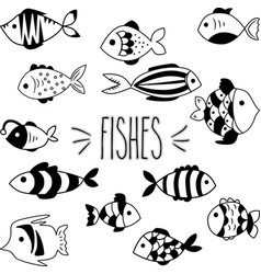 black and white hand sketch fishes vector image