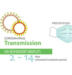 Coronavirus transmission prevention icon isolated vector