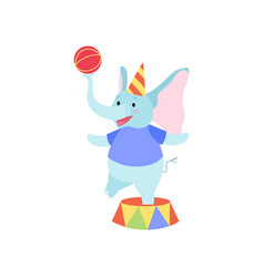 Cute elephant standing on stage with ball funny vector