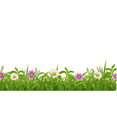 Grass flowers realistic border vector