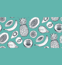 seamless pattern with hand drawn fruits vector image
