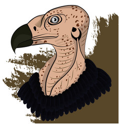 Vulture head vector