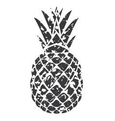 pineapple grey grunge vector image