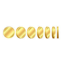 set of coins in different positions vector image