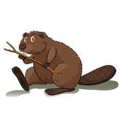 An eager beaver vector image vector image