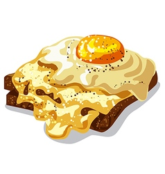 toast with fried egg vector image vector image