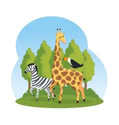 african zebra and giraffe in the savannah vector image