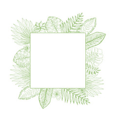 bright green square frame of tropical leaves vector image
