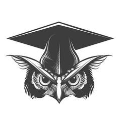 owl in bachelor hat tattoo vector image