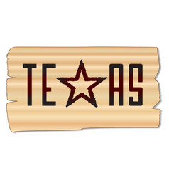 texas brand vector image