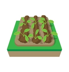 Beds with plants cartoon icon vector image