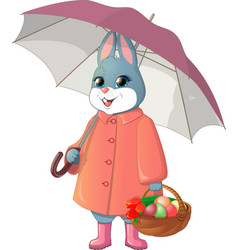 rabbit with umbrella vector image