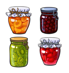 apricot cherry strawberry and kiwi jam vector image