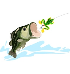 Bass and lure vector image vector image