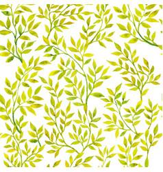 watercolor green flora vector image vector image