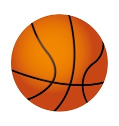Basketball ball isolated icon vector