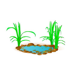 beautiful little lake with grass for landscape vector image