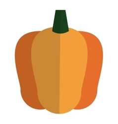 bell pepper icon vector image